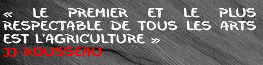 Rousseau-1411638094