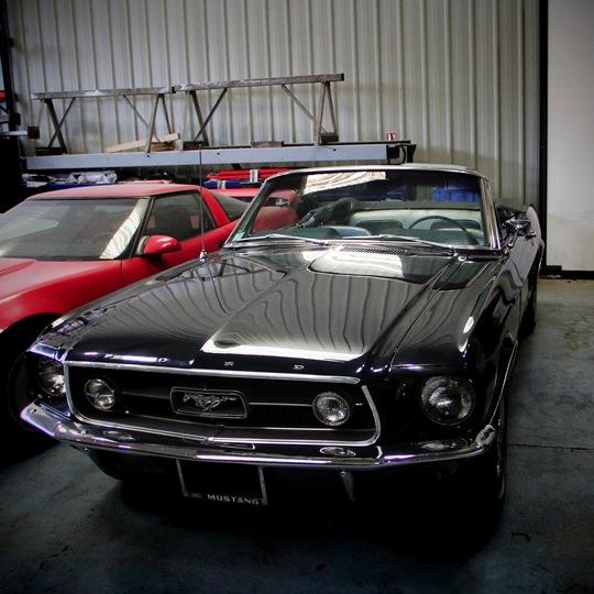Mustang-1412365672