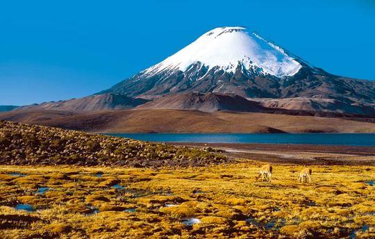 Chili-1413559018