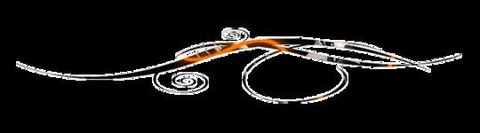 Liseret_noir_et_orange-1413825578