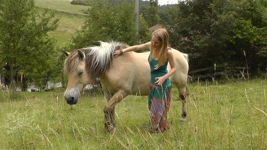 Ma_tre_cheval11-1413997660
