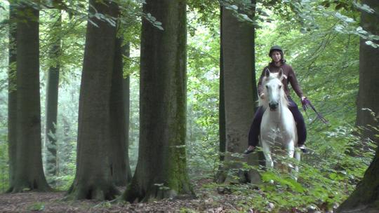 Ma_tre_cheval8-1413997763