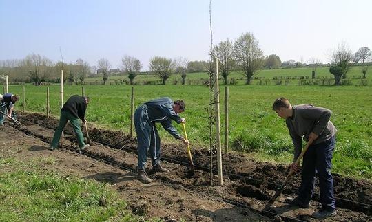 Plantation_bocage_sm-1414163302