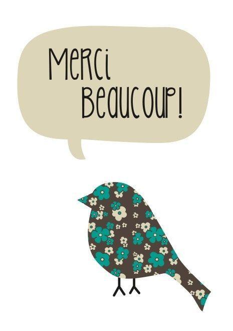 Merci_oiseau-1415269990