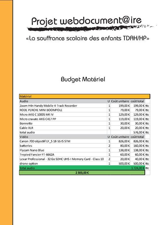 Budget-1415354856