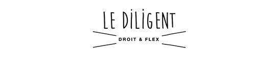 Logo_le_diligent-1415640458