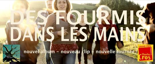 Visuel_des_fourmis-1416558684