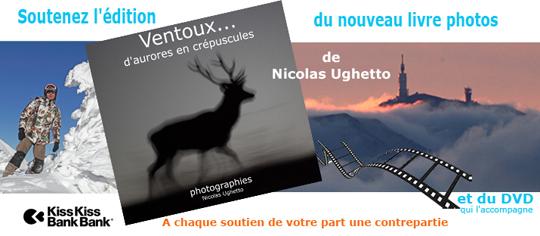 Newvisuel-1416568001