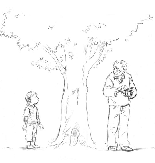 Bk-illu-arbre-2-1416602931