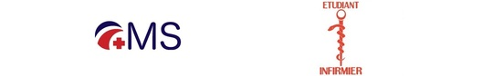 Caducee-autocollant-voiture-1416678212
