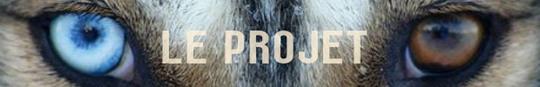 Le_projet-1416759023