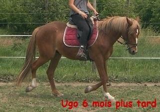 Ugo2-1416931875