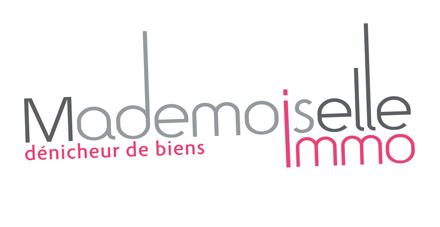 Logowebmlleimmo-1417386388