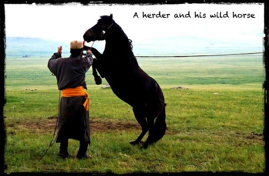 Crazy_horse_for_kkbb_2-1418025119