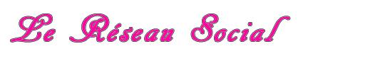 Le_reseau_social_lovlink-1418300480
