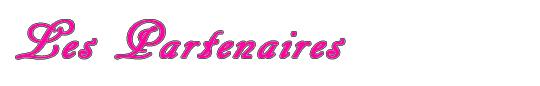 Les_partenairesl_lovlink-1418300673