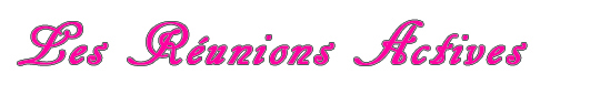Les_reunions_actives_lovlink-1418300728