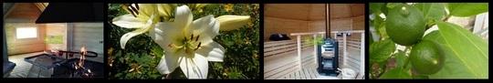 Bandeau_grille_et_sauna_retouch-1419362682