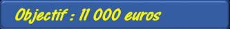 Objectif_11000_euros-1419875816