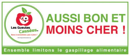 Les_gueules_cassees_plv_petit-1420410207