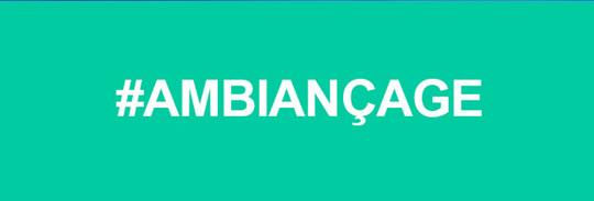 Ambiancage-1420583142