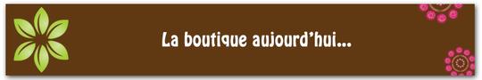 Bandeau-titre_vert_framboise_3-1421251646