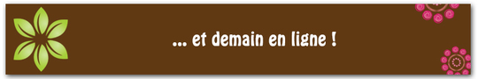 Bandeau-titre_vert_framboise_4-1421256153