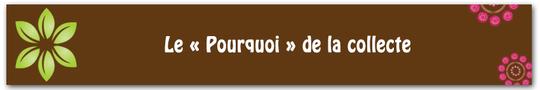 Bandeau-titre_vert_framboise_5-1421256640