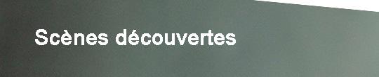 Bandeau_doc_projet_-_sc_nes_d_couvertes-1421579030