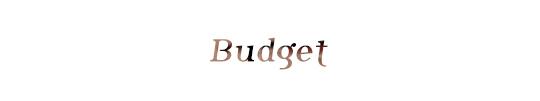 Budget-1422018294