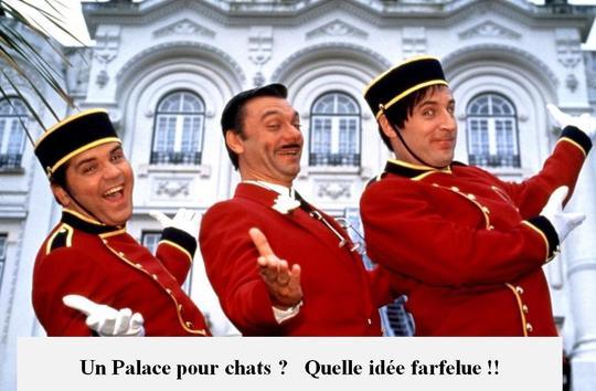 Palace-1422275132