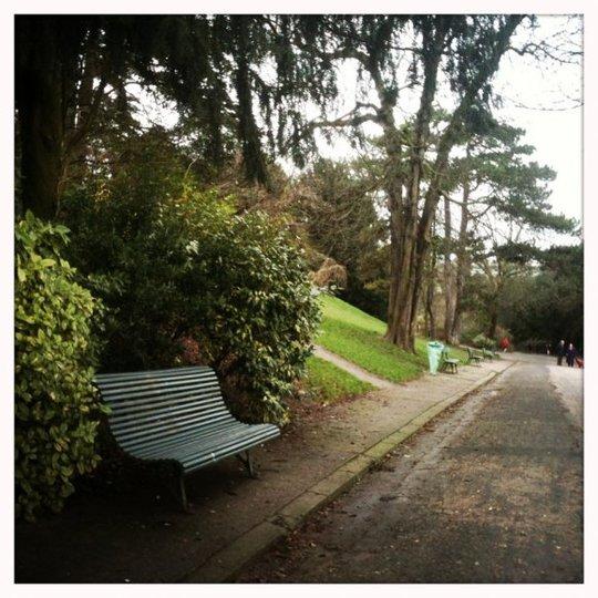 Parc_le_bel_age-1422282317