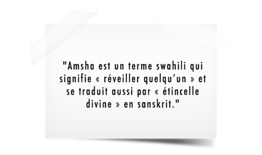 Amsha-signification-post-it-1422326863