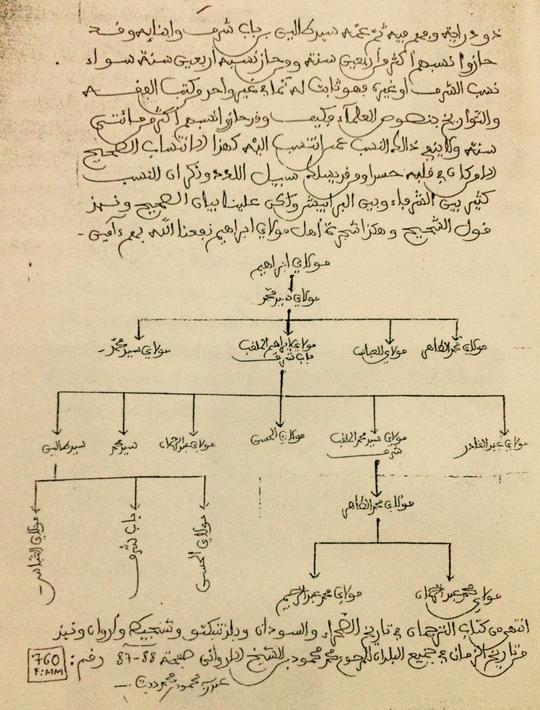 Arbre_genealogique-1422456902