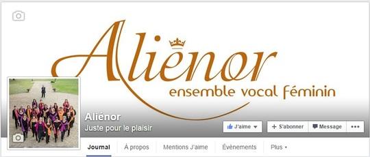 Facebook_alienor-1422558824