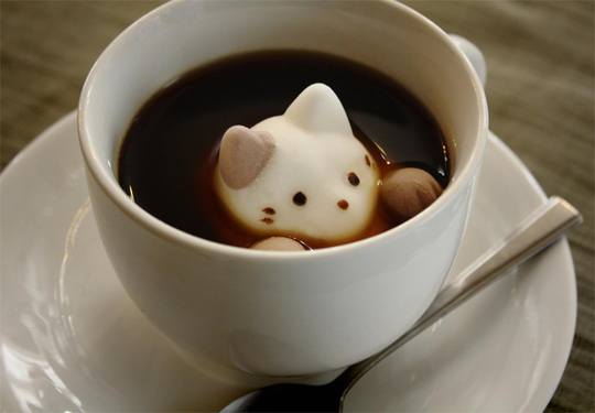 Cat-latte-art-2-1422737337