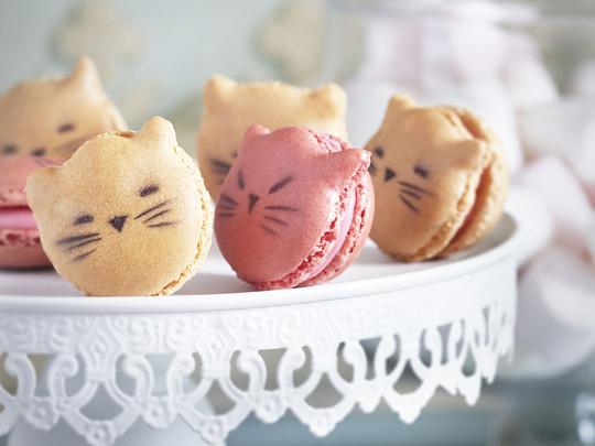 Les-macarons-badou-badou_max1024x768-1422739643
