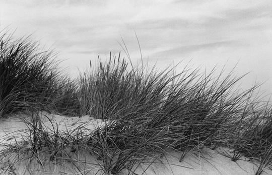 2013-g5-036_dunes-1422824521