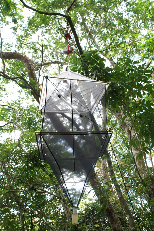 Remote_canopy_trap-1423131105