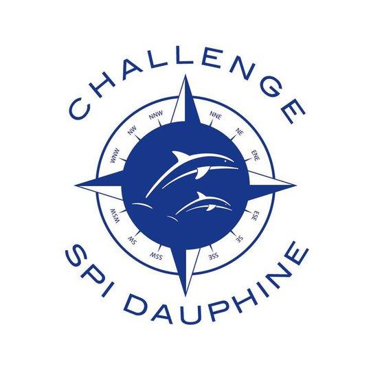 Logo_-_spi_dauphine-1424783467