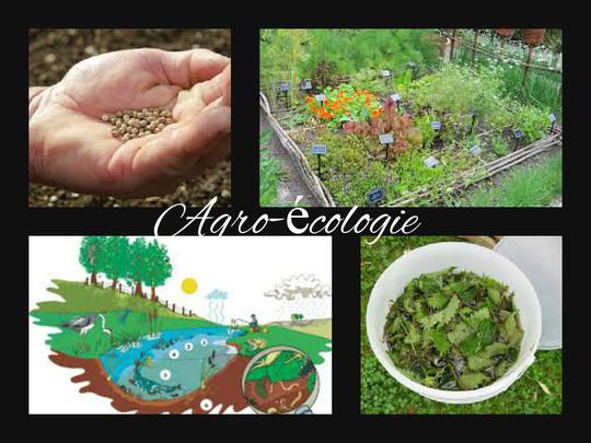 Agro-_cologie-1424788563