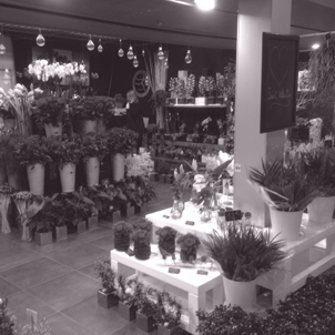 Boutique_fleurs-1424952398