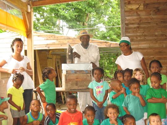 Classe_de_maternelle_de_bouillante__guadeloupe__approche_apicole_2011-1425304425