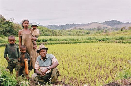 Famille-cultivateur-producteur-riz-madagascar-8959-1425339389