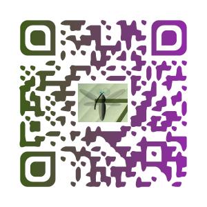 Qrzim-1426406322