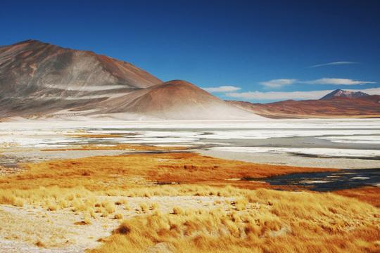 Atacama_1-1426650248