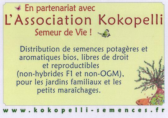 Partenariat_kokopelli_bd-1426773047