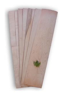 Placage-de-longboard-1427205559