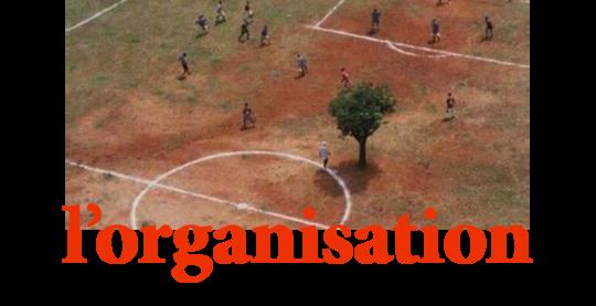 Organisation-2015-1427318620