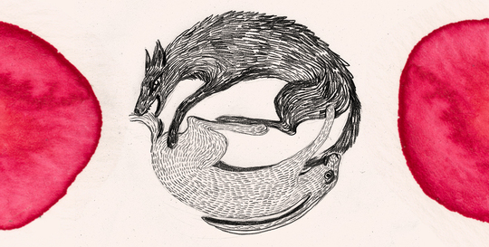 Wolf-frisst-hase-2b-1427387338